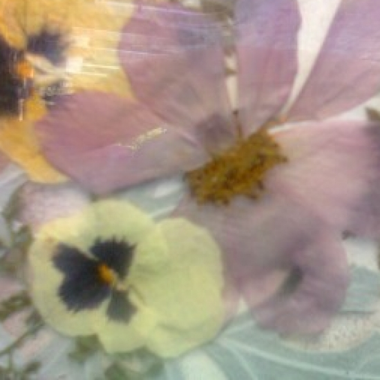 цветя и бижута in Bazarino