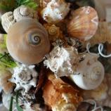 Морски букет с миди, охлюви и рапани, Булчински букети