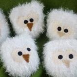 компанията  полярни сови търсят!