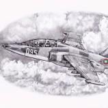 Рисунка на българско Су 25.