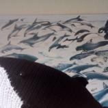 Плетена играчка гърбат кит