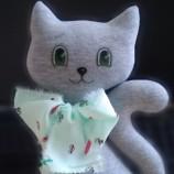 Коте с панделка в цвят мента