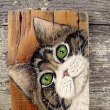 Коте - декорация за стена