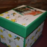 Кутия-Албум