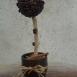buy дърво от кафе in Bazarino