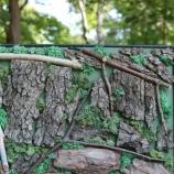 buy Картина от естествен балсамиран мъх и три вида дървесни кори in Bazarino