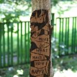 Пирографирана дървесна кора