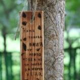 Книгоразделител от пирографирана дървена летвичка