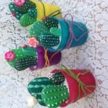 buy кактуси от камъни in Bazarino