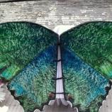 Тефтер Пеперуда