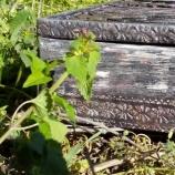 Кутия от дървени шпатули