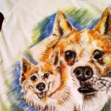 Кучешки свят