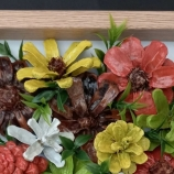 buy Цветя  in Bazarino