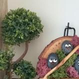 buy Декорация с рисувани морски камъни и скандинавски мъх  in Bazarino