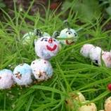 Гъсенички за посаждане