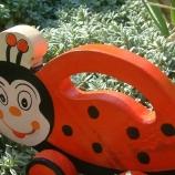 дървени детски играчки за бутане