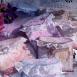 buy Плик от покълваща хартия in Bazarino
