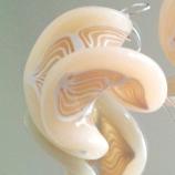 Бели спирали- обици от полимерна глина и сребро