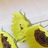 Слънчогледи от креп хартия -3бр