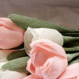 9 кпер лалета в розово и шампанско