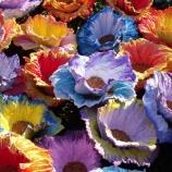 Покълващо цвете - подложка за великденско яйце
