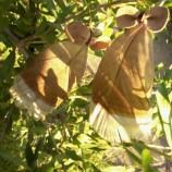 Обеци - индиянски пера